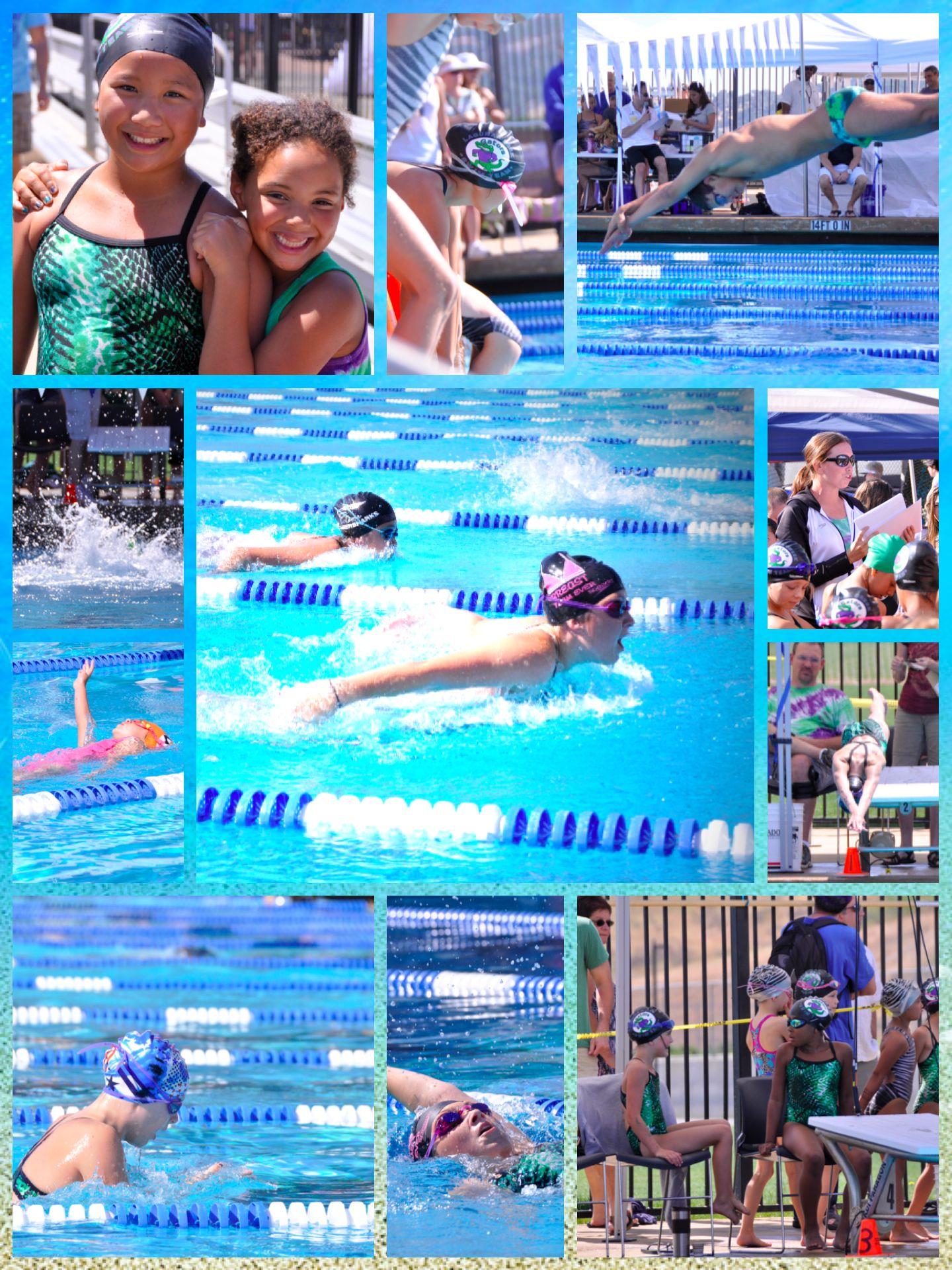 Collage Of Swim Meet Pictures