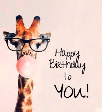 Happy Birthday Funny Happy Birthday Wishes Giraffe Happy Birthday Happy Birthday Pictures