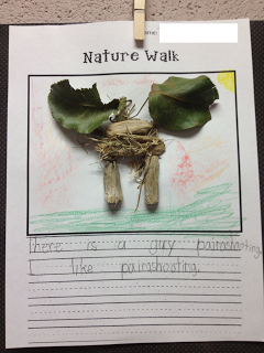Nature Walk activity - the link is right but you have to scroll down to get to the right post - i think it's a pretty good idea!