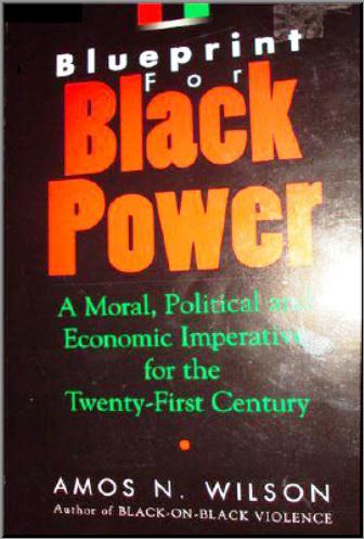 Economics and afrikan nationalism dr amos wilson blueprint for economics and afrikan nationalism dr amos wilson blueprint for black power multimedia malvernweather Gallery