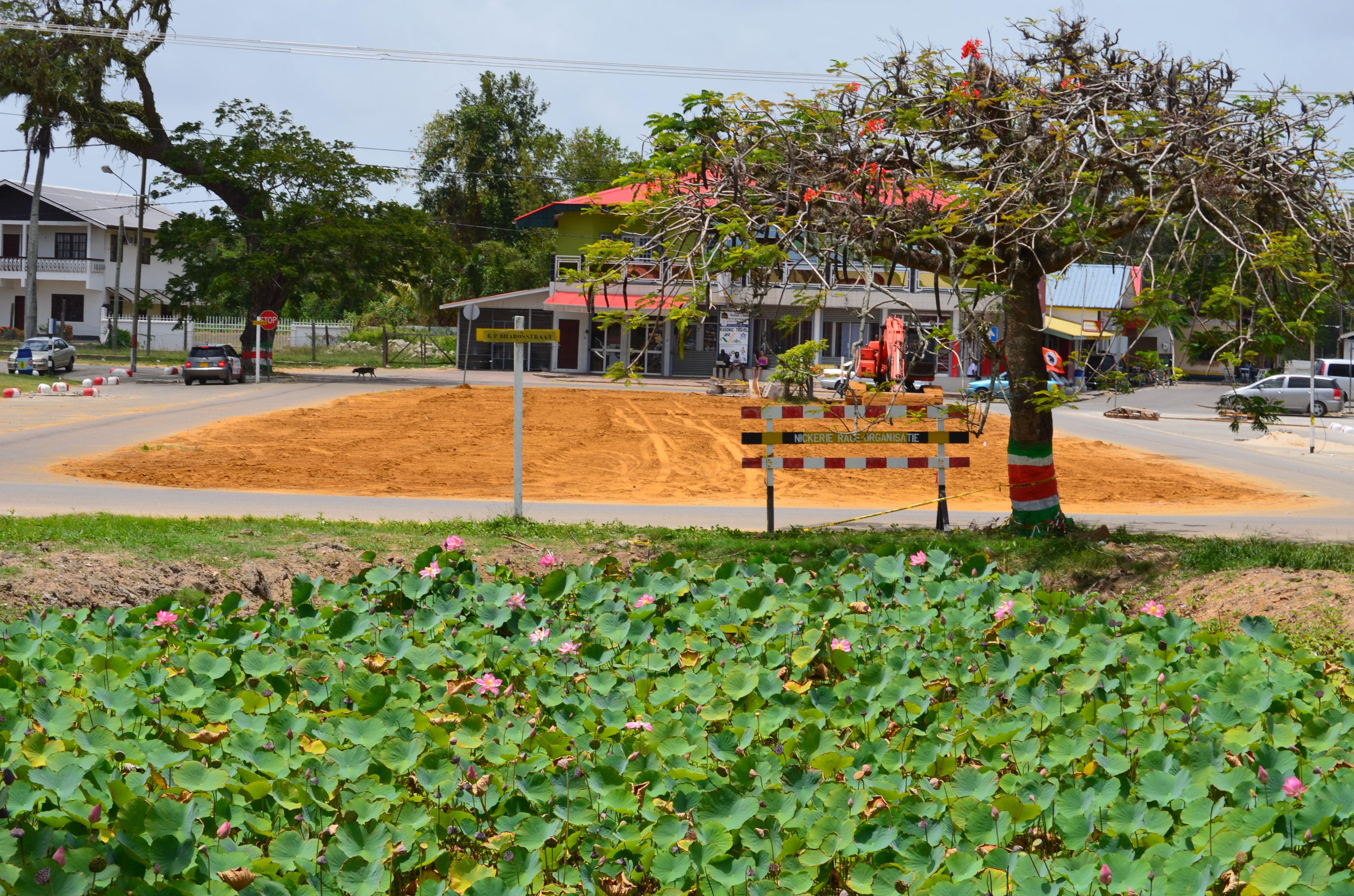 #Nickerie  #NieuwNickerie #Suriname #Surinam  #PhotoByEllyvanPel