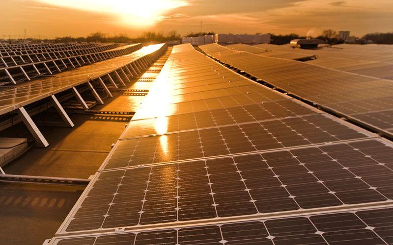 Solarworld Solar Farm Solar Power Plant Solar Projects