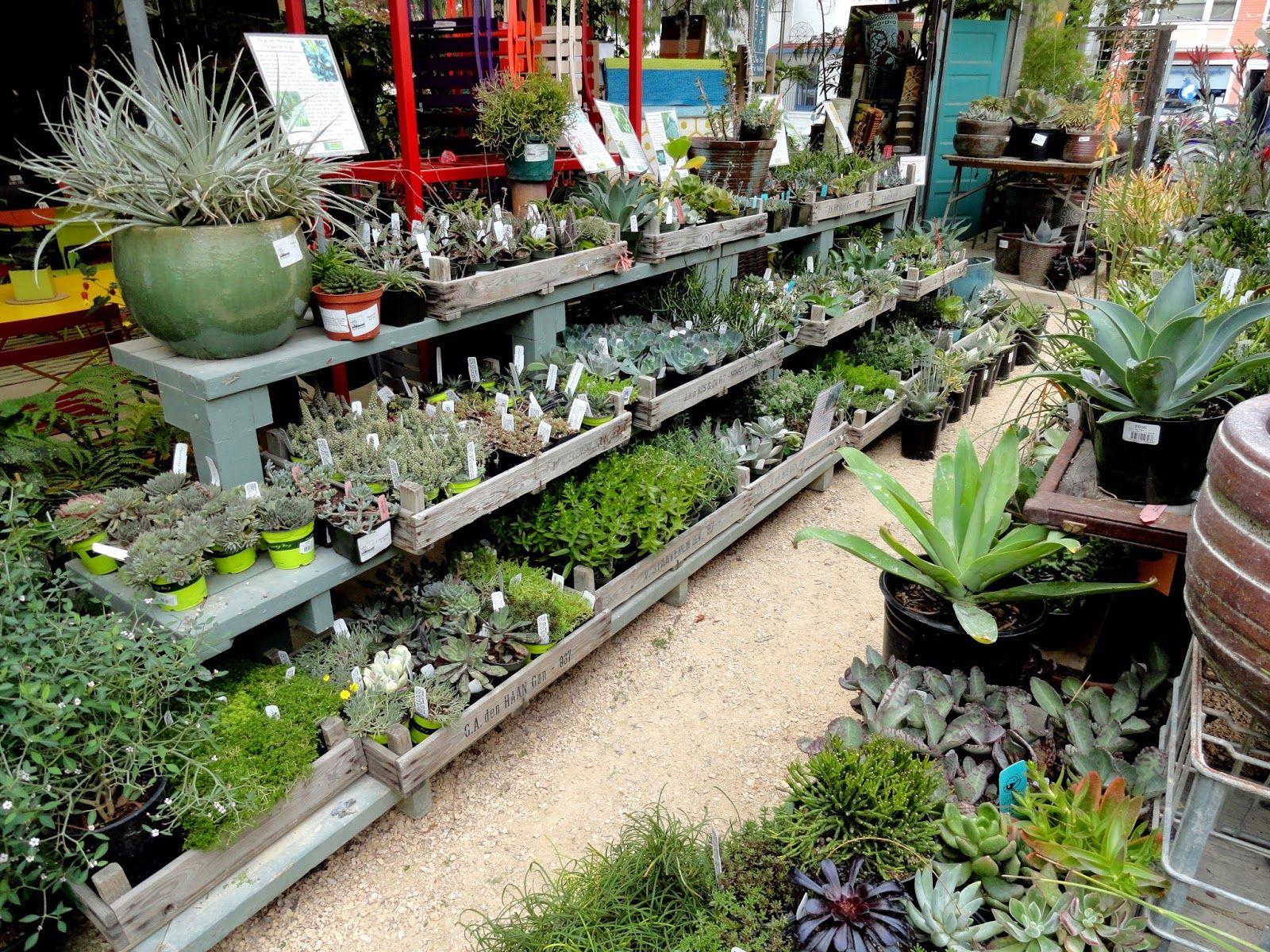 Visiting Flowerland Garden Centre Displays Garden Center