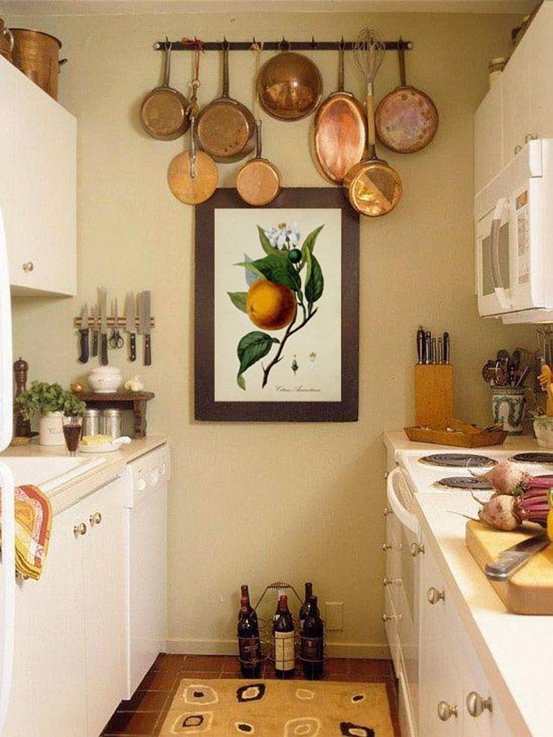 Fruit Kitchen Wall Art Print, Antique Botanical Illustration, , Fruit Orange Print, Rustic Vintage Kitchen Wall Art Poster