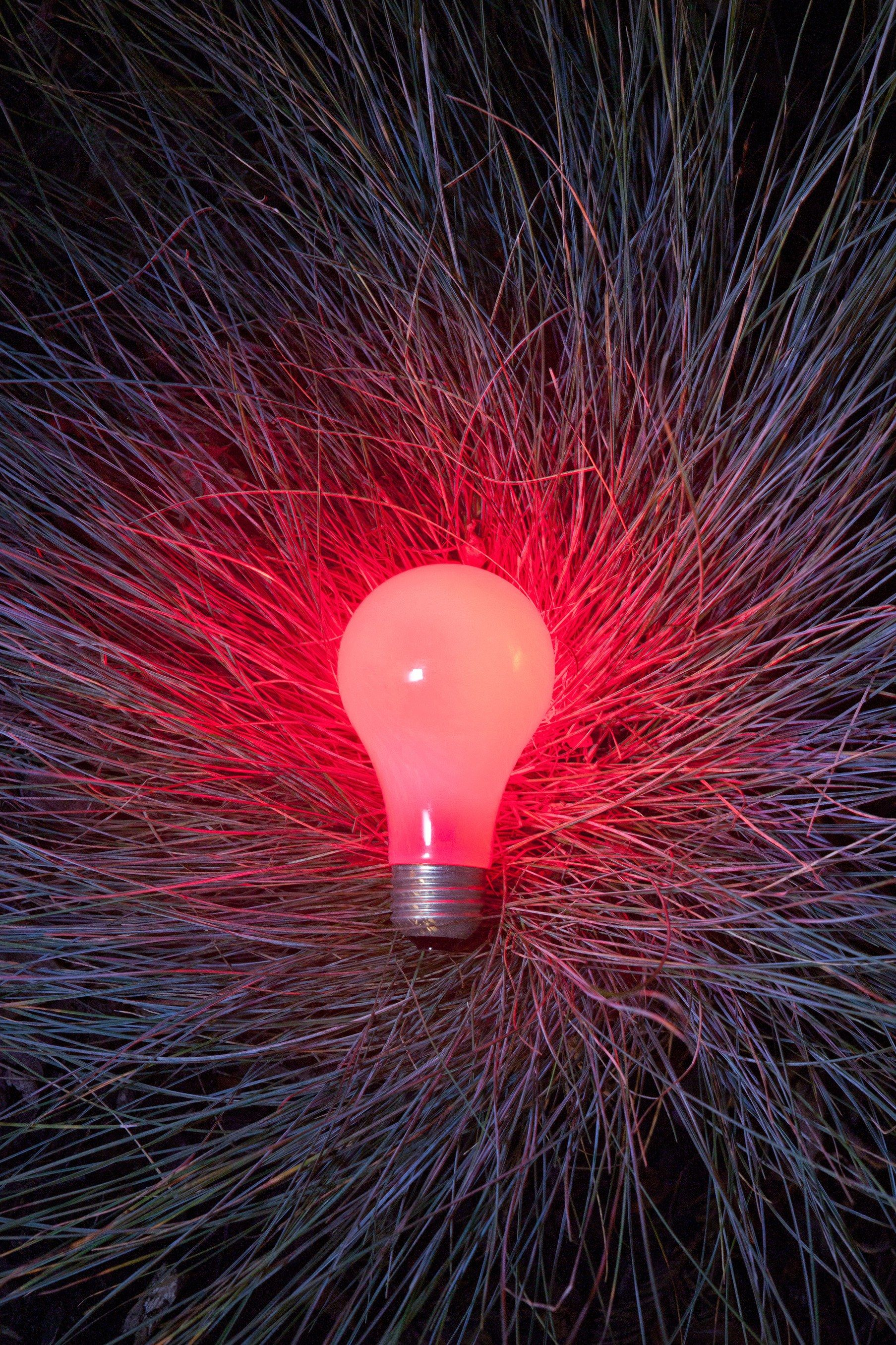 *You've never seen science expriments look quite like this*  Caption: A bulb lit by a single laser pointer beam, demonstrating the diffusion of light