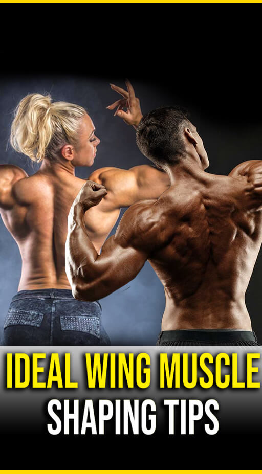 #Corner #Fitness #ideal #Muscle #Shaping #tips #Wing Ideal Wing muscle Shaping Tips - Fitness Corner