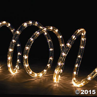 Clear rope lights enchanted forest pinterest rope lighting clear rope lights aloadofball Choice Image