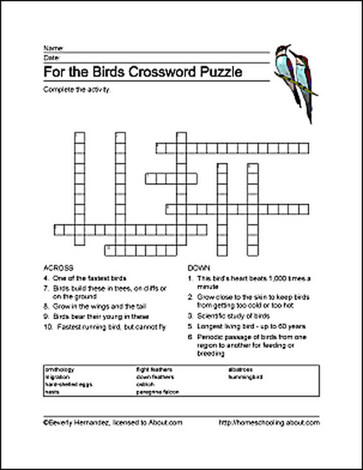 Birds Wordsearch Vocabulary Crossword And More Puzzle