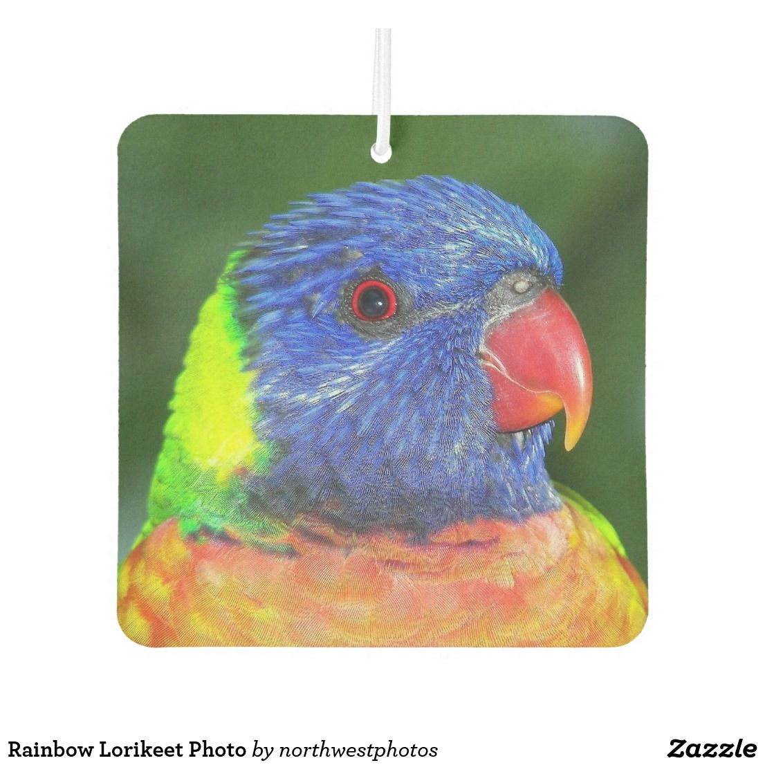 Colorful Rainbow Lorikeet Parrot Photo Air Freshener