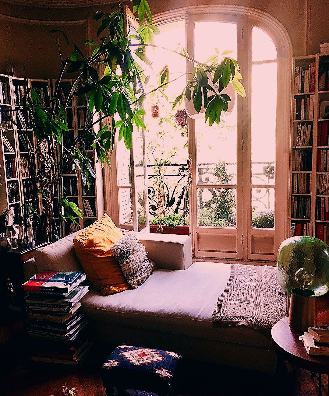bohemian living room with big plants and bookcases in parisian apartment #homedecor #livingroomdecor #bohemiandecor #houseplantclub #parisianapartment