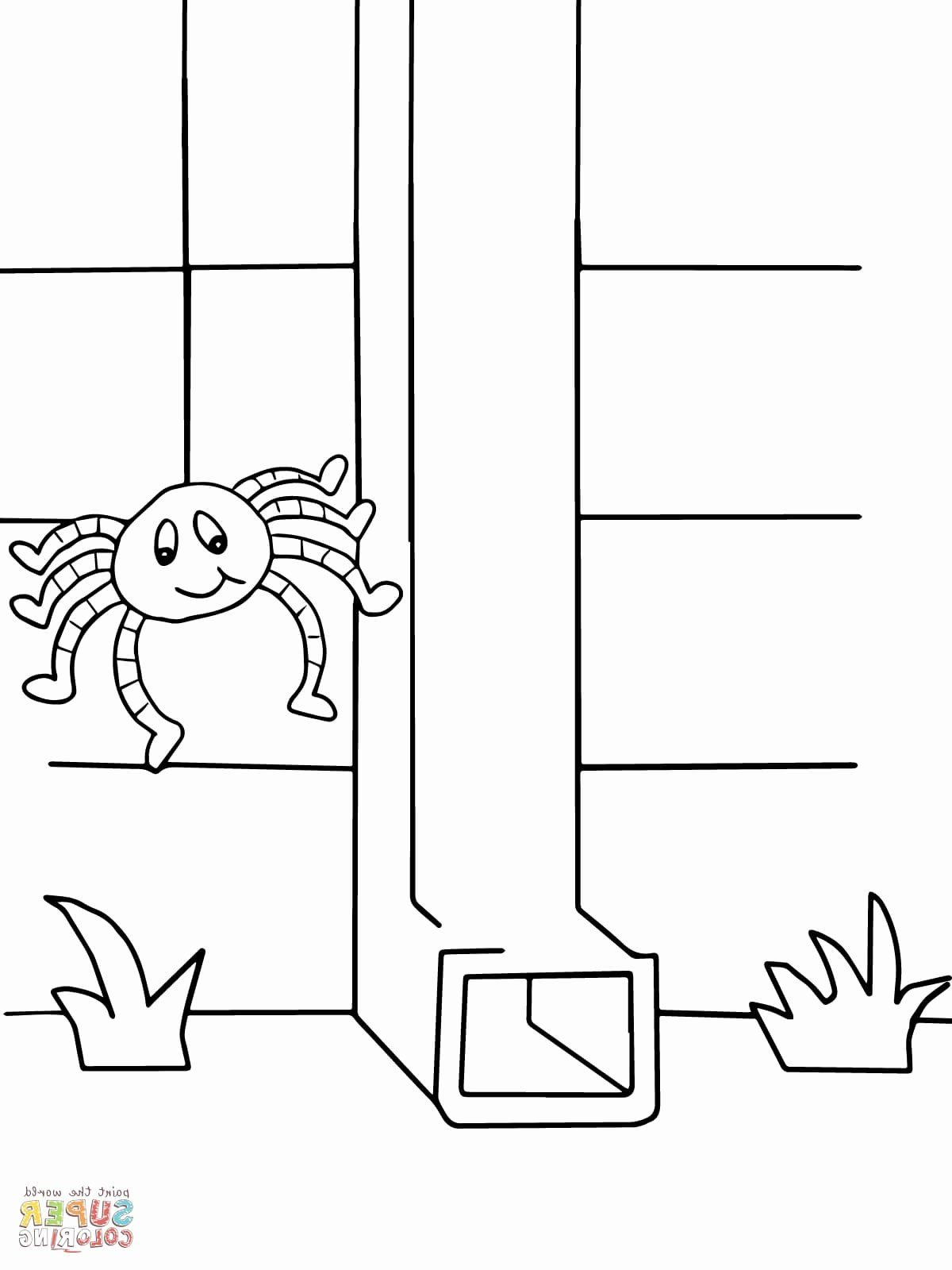 Itsy Bitsy Spider Coloring Page Best Of 45 Itsy Bitsy