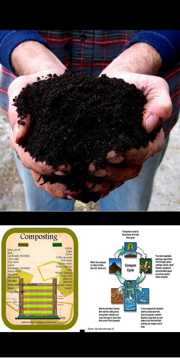 Composting Guide For Healthful Soil Handyman Tips How To Make Compost Compost Urban Composting