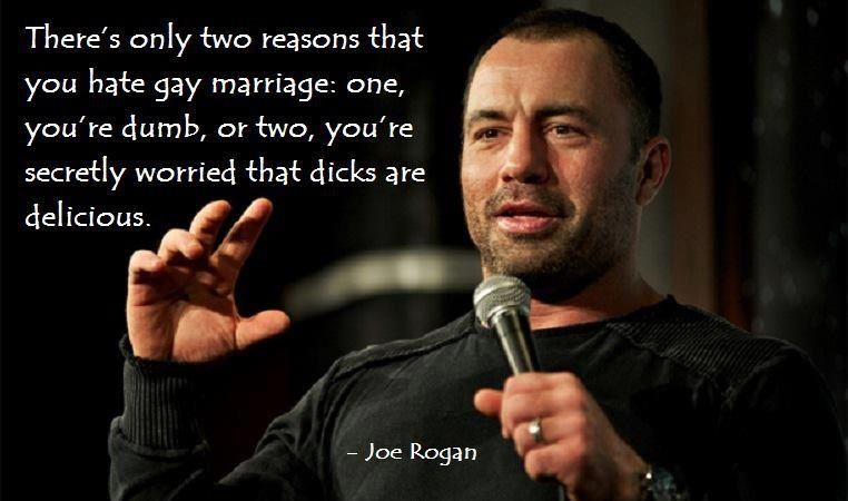 Gay Marriage Quotes Stunning Joe Rogan On Gay Marriage Quotes That Mean Something  Pinterest . Inspiration