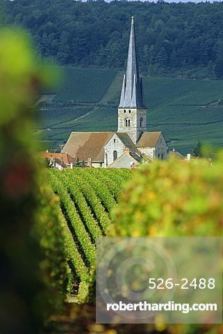 Chamery, Montagne de Reims, Champagne, France, Europe Agriculture - chambre d agriculture du loir et cher