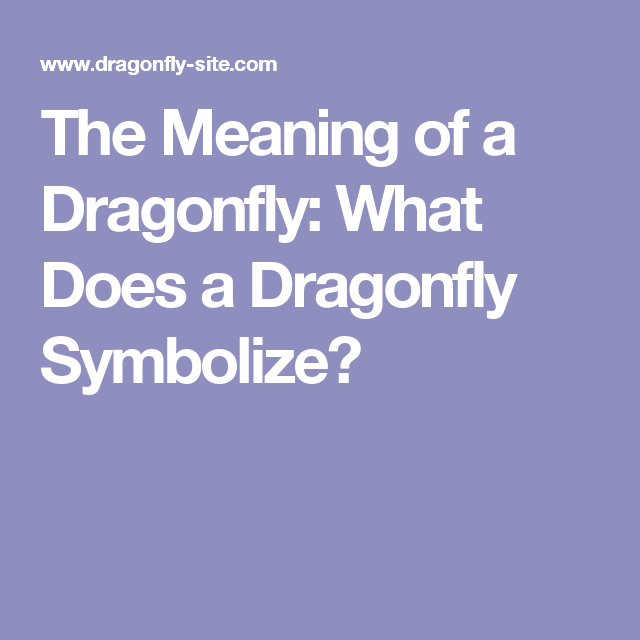 The Meaning Of A Dragonfly What Does A Dragonfly Symbolize