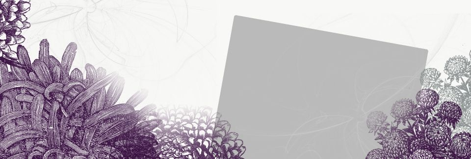 لافتة جديدة جديد بسيط تنورة الأرجواني الزهور الملصق راية Purple Background Images Watercolour Texture Background Watercolor Flower Vector