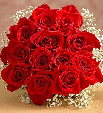 Pin By Valentin Fashion On Flowers Islam Rose Images Pretty Flowers