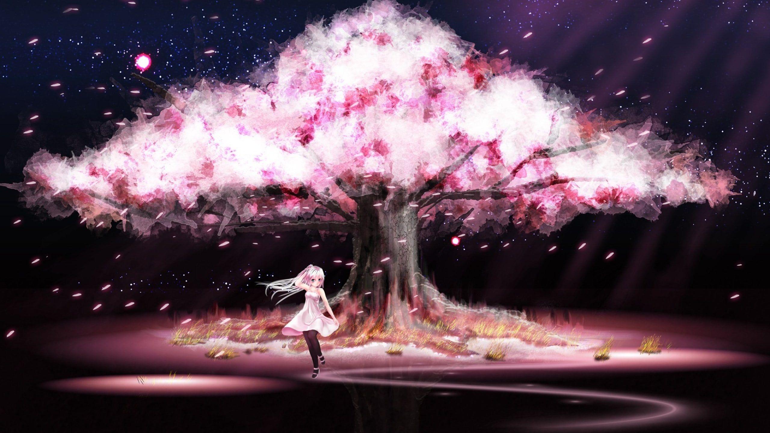 Anime Sakura Blossoms Cherry Tree Anime Blossoms Cherry Sakura Tree Anime Sakura Blossoms Ch Cherry Blossom Wallpaper Anime Cherry Blossom Anime Scenery