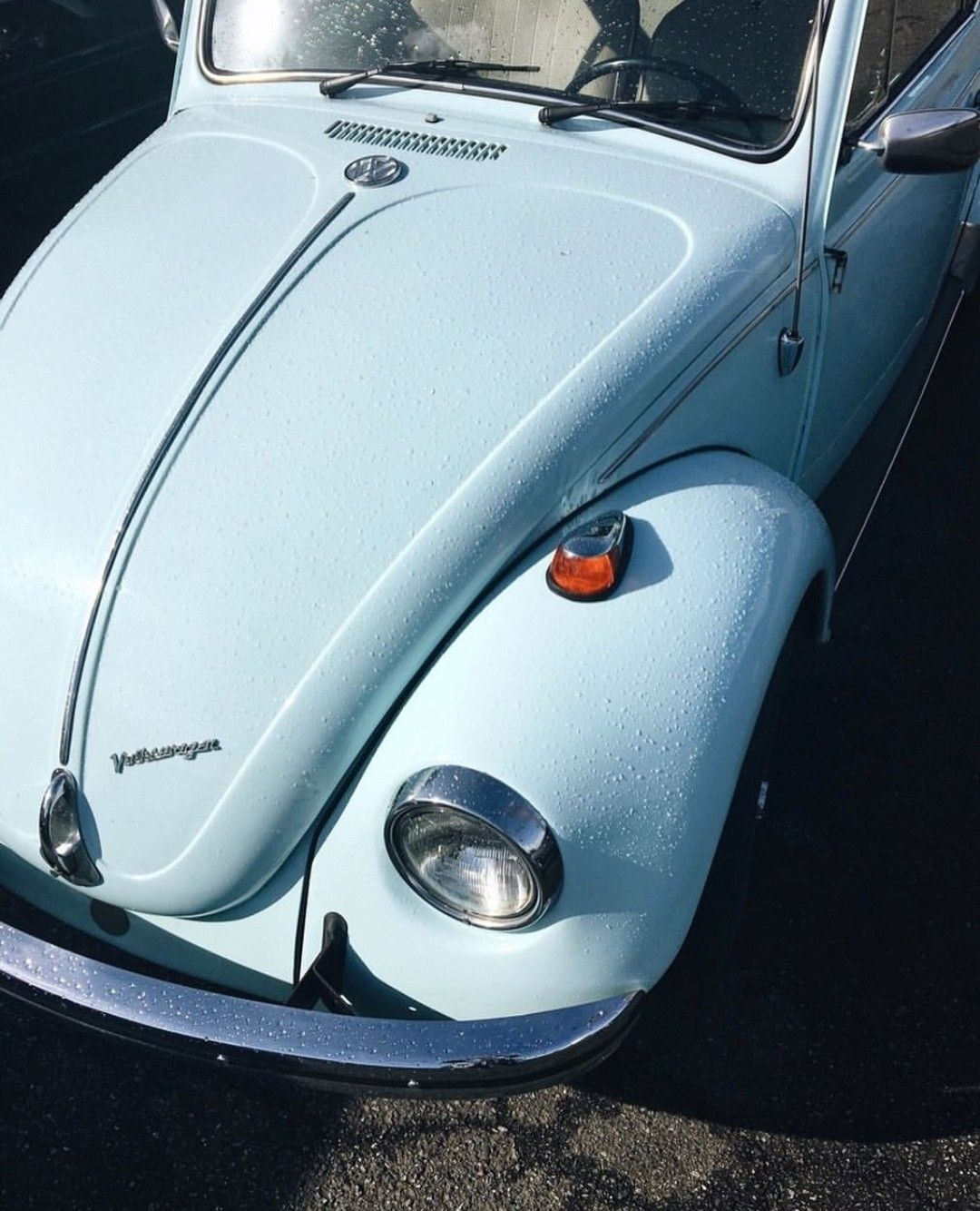 old vw bug, baby blue Classic cars, Blue car, Classic
