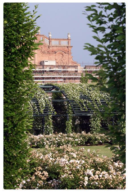 Reggia di Venaria Reale Learn Italian in Turin www