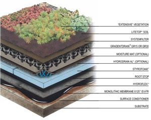Green Roofing And Commercial Garden Roofs