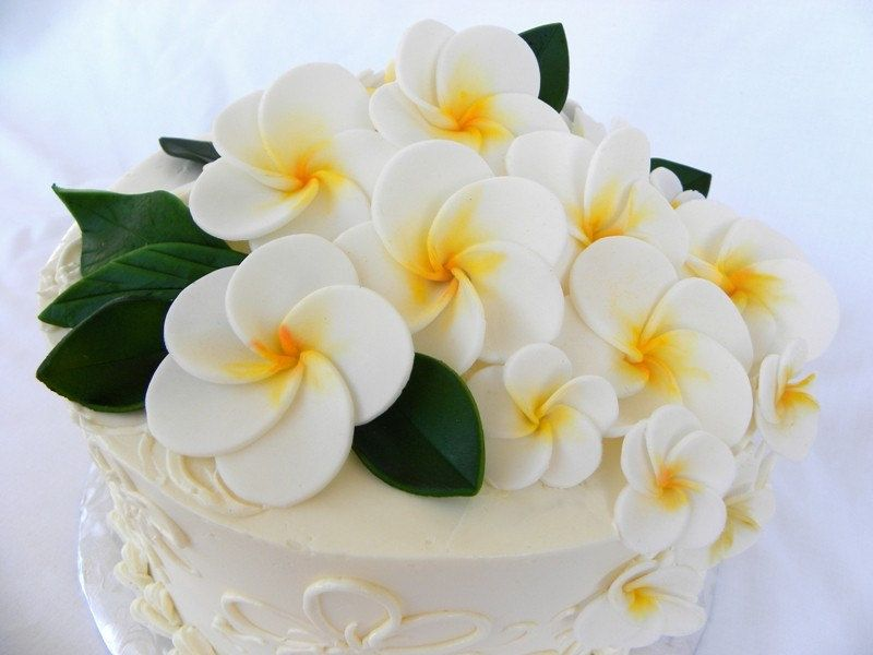 frangipani wedding cake toppers edible plumeria cake toppers tying the knot 14446