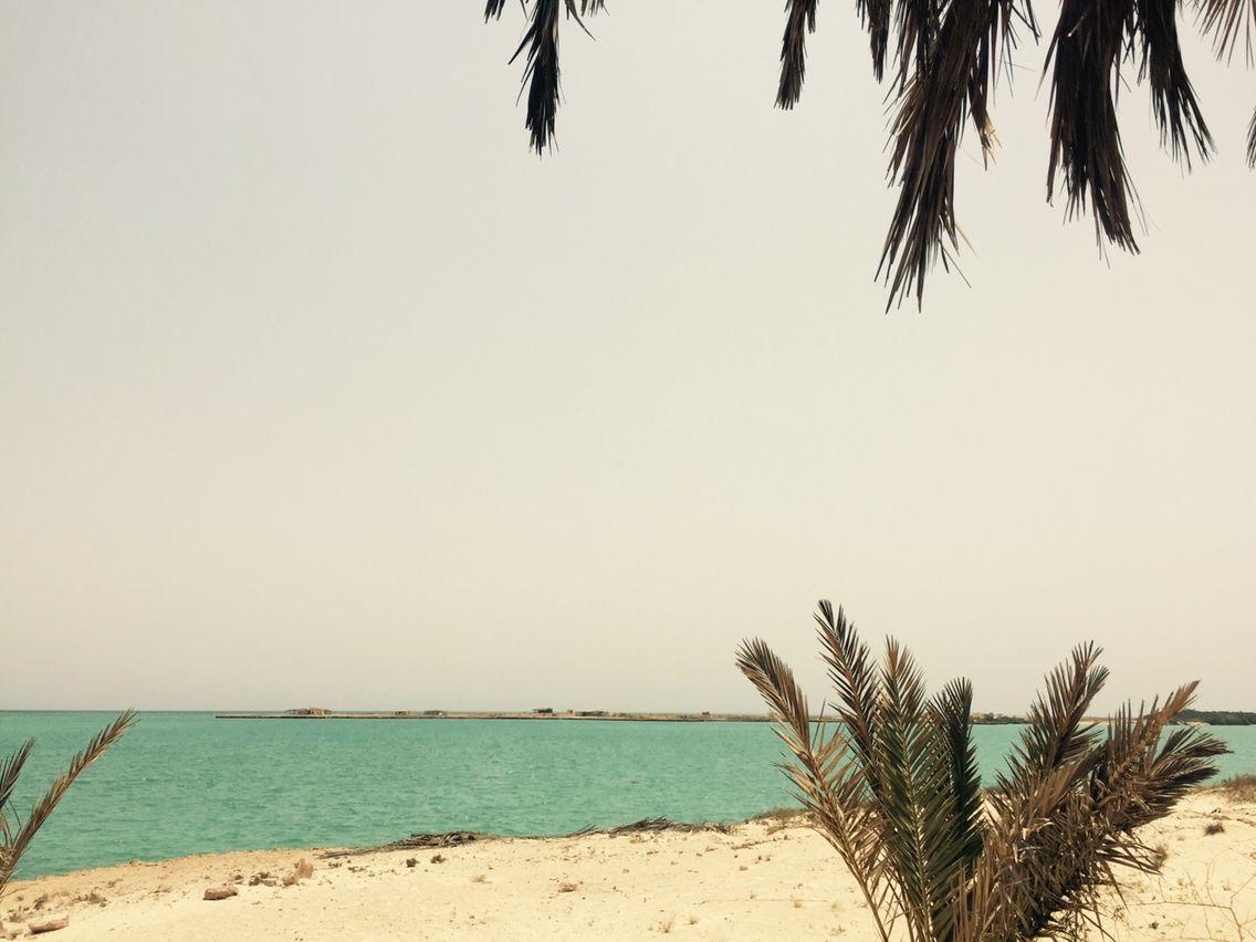 Moucha Island Djibouti