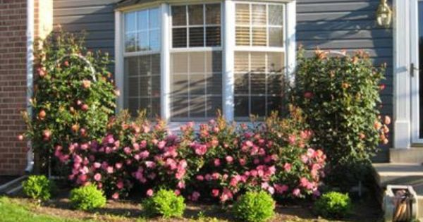78 Best Images About Bay Window Landscaping On Pinterest Pvc Backyard Garden Design