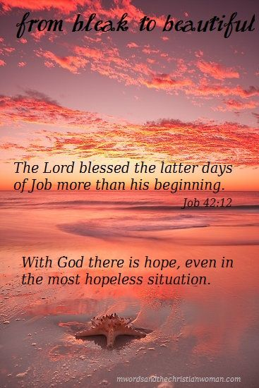 Now the Lord blessed the latter days of Job more than his beginning