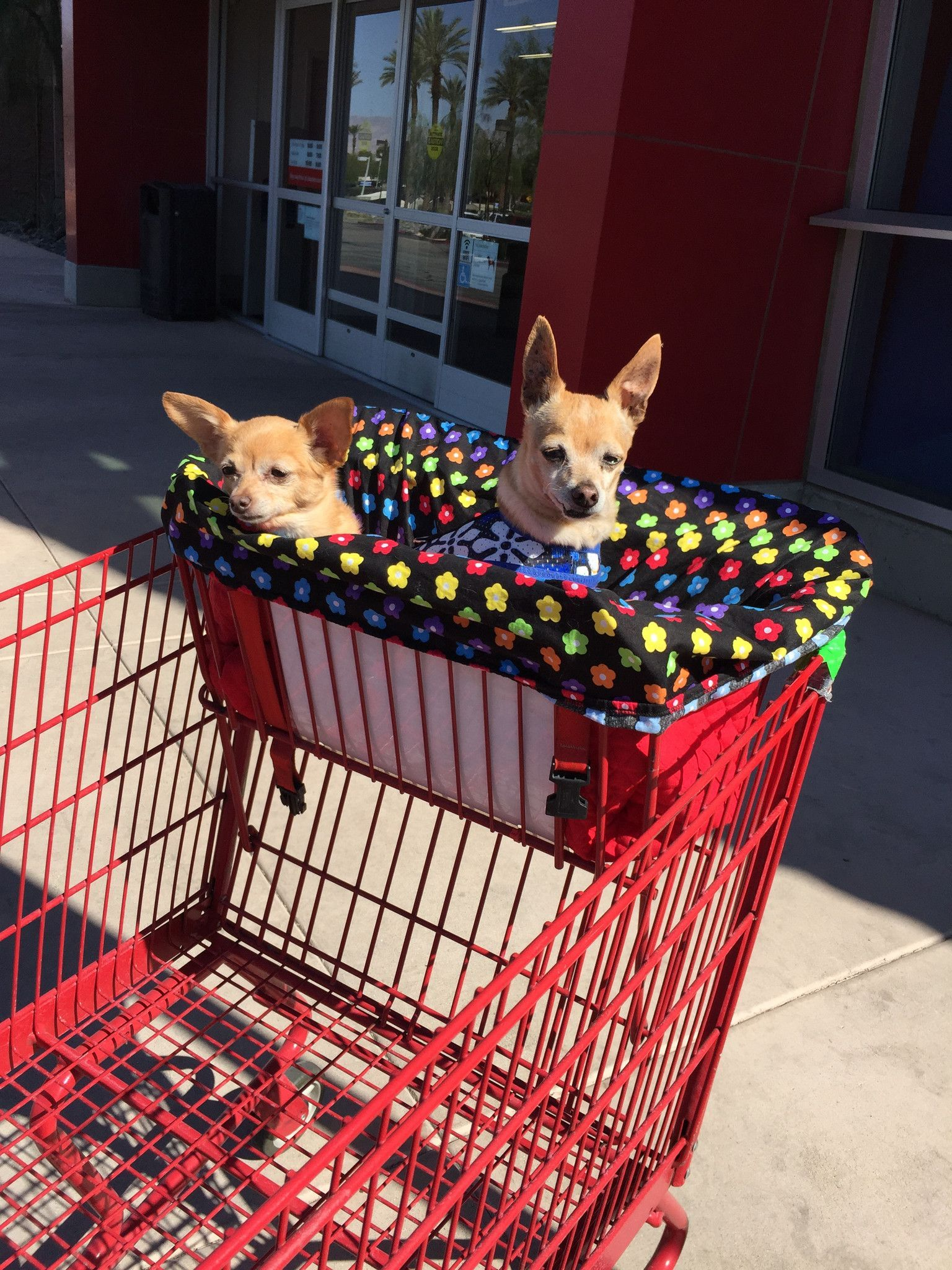 Do you take your dog everywhere? Does that include having to put them in the basket of the shopping cart? Well we have just the thing to keep them comfy and ...