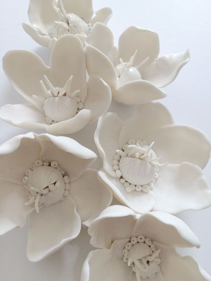Inspired by cannonball flowers syra gomez unglazed white porcelain inspired by cannonball flowers syra gomez unglazed white porcelain flowers mightylinksfo