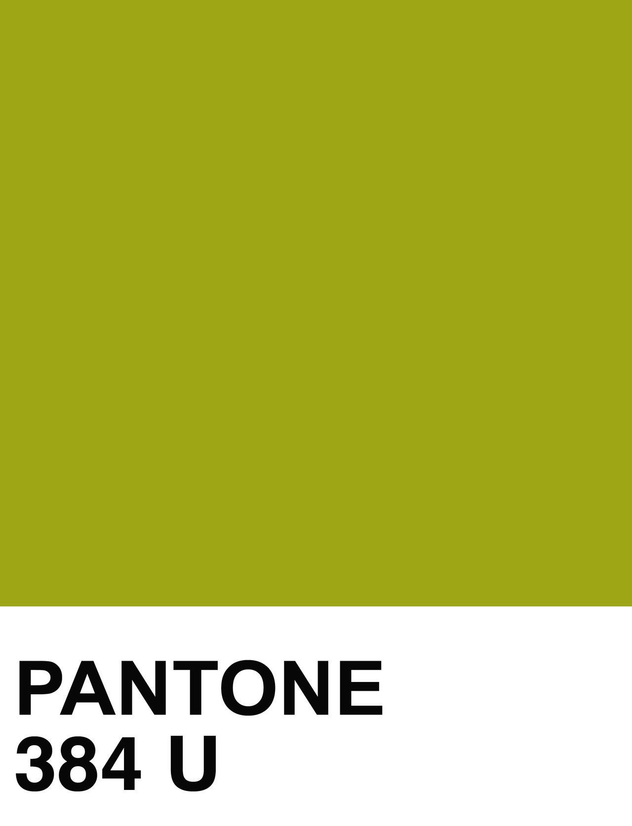 78b83b866de Pantone 384 U Pallette