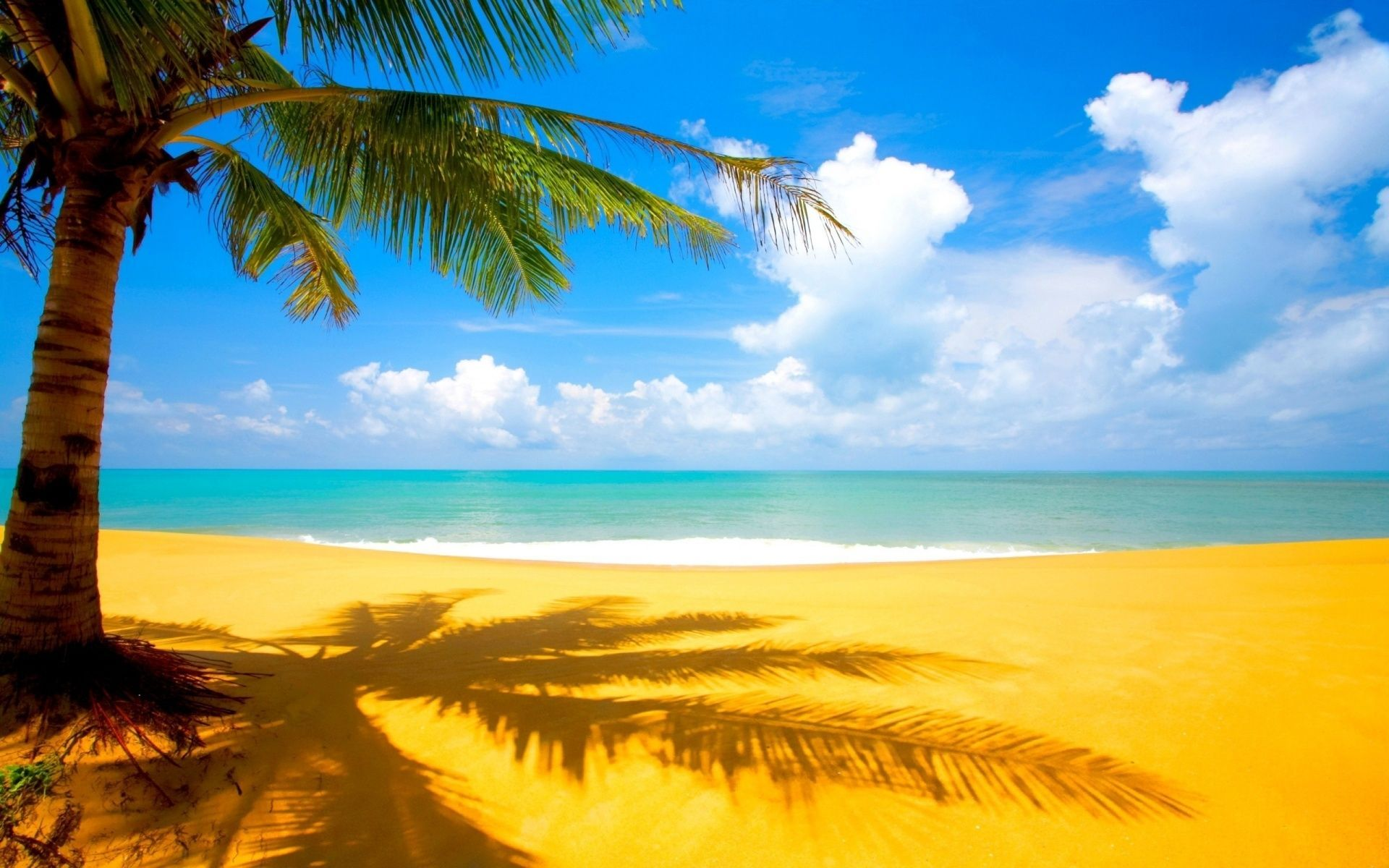 55 Super High Resolution Beach Wallpapers Download At Wallpaperbro Beach Wallpaper Beach Pictures Palm Tree Background