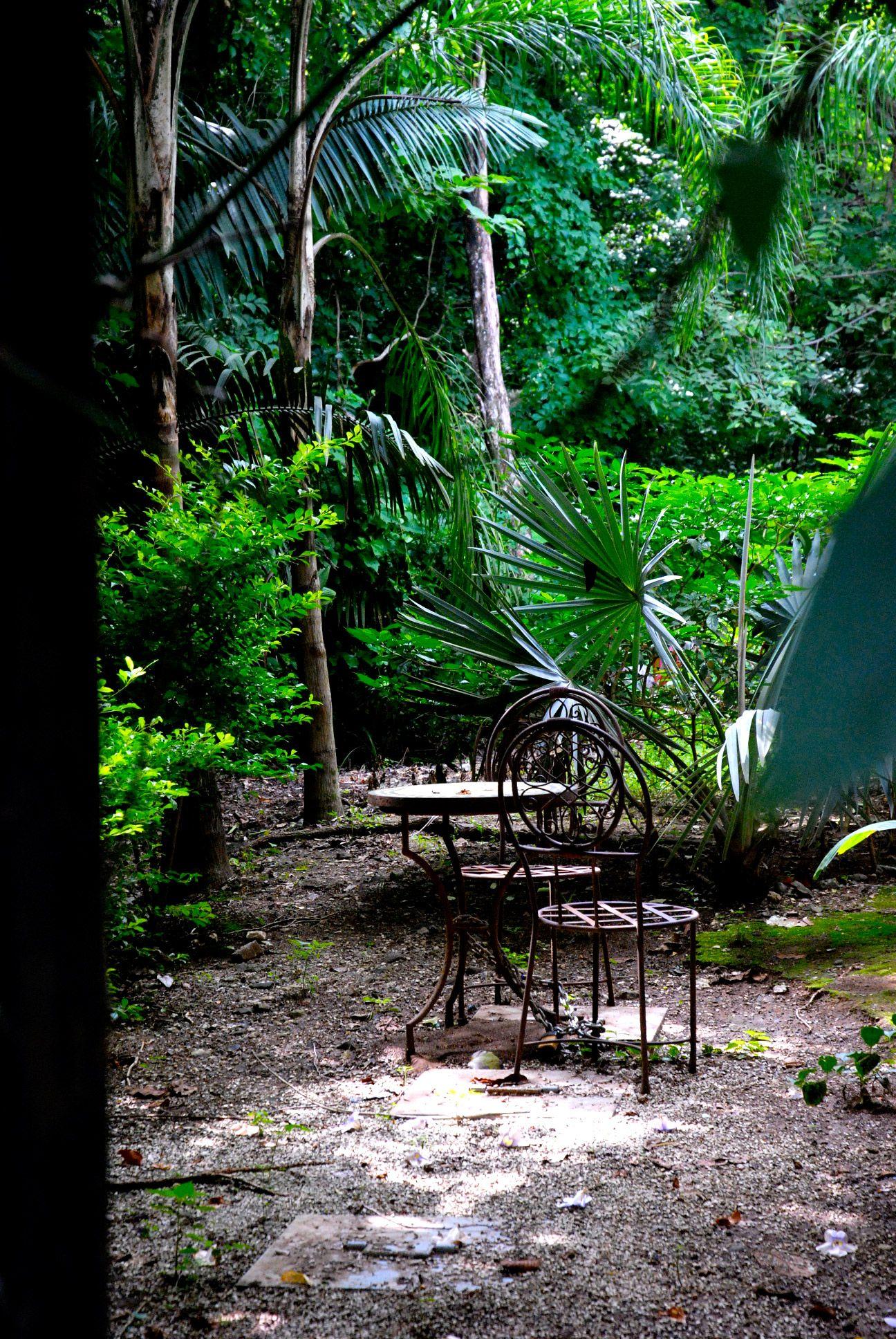 jungle garden jungle gardens tropical garden tropical on attractive tropical landscaping ideas id=45560