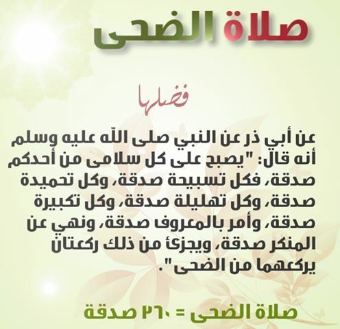 Pin By Hanan Hijazi On الصلاة خير موضوع Holy Quran Words Of Wisdom Words