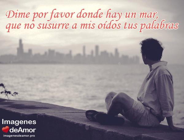 Poemas De Amor Con El Corazon Roto Dime Por Favor Un Poema De Desamor Poemas De Desamor Poemas