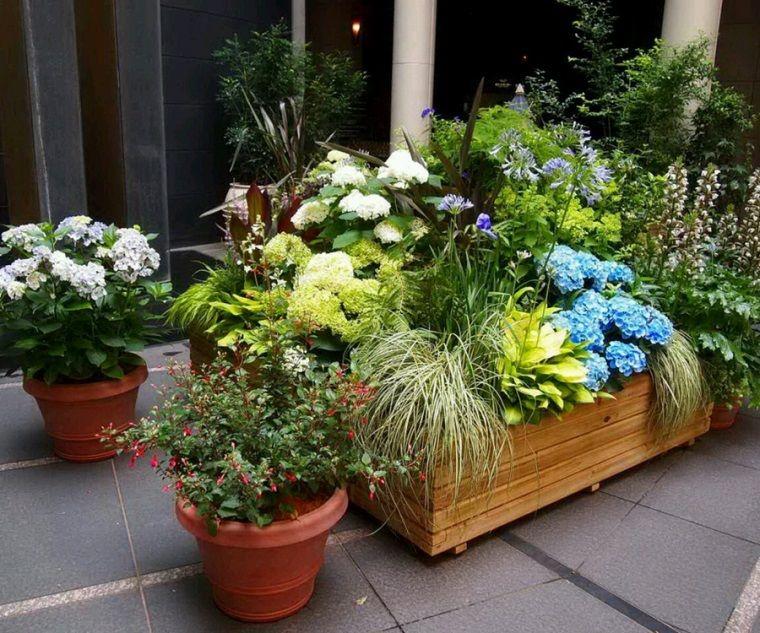 macetas y jardineras con muchas flores juntas | gardening