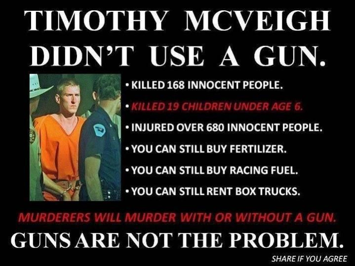 Quotes On Gun Control Interesting Gun Control Quotes  Google Search  Saving America No More Pc