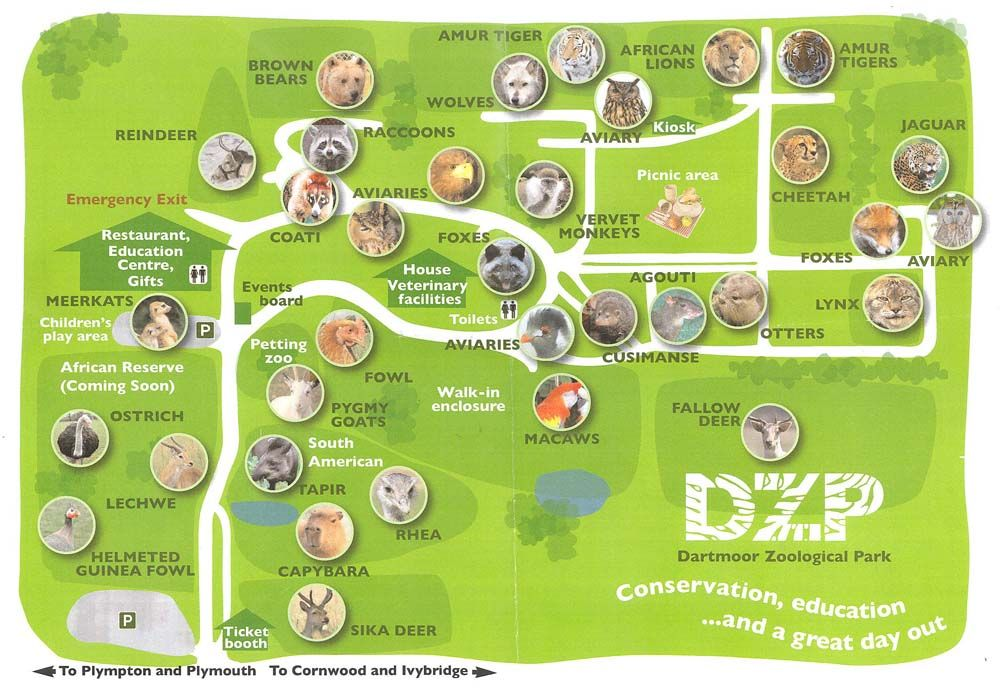 Zoological Dartmoor National Park | Dartmoor Zoological Park review on