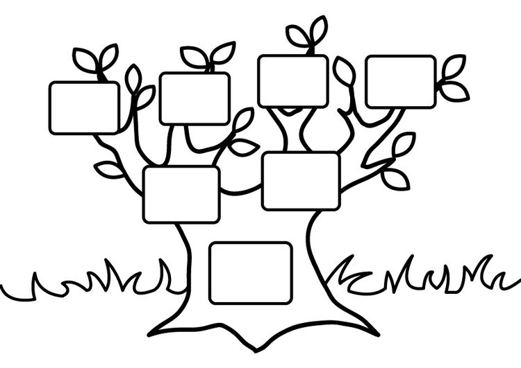 Coloring Page Empty Family Tree Alberi Genealogici