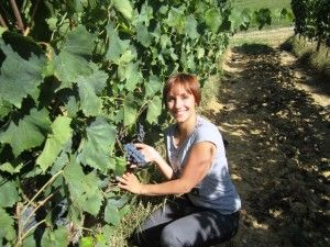 Grape harvest weekend in Tuscany