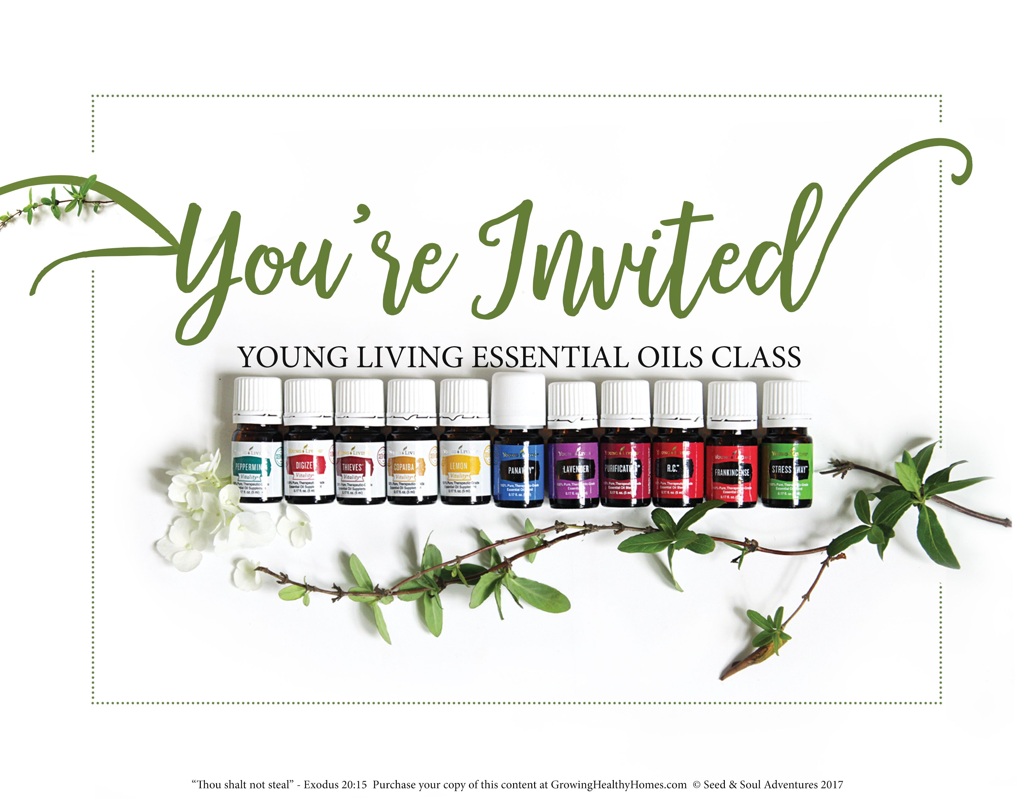 Young Living Essential Oils Online Class And Cyber Monday Sale! Join Us  Online To Learn More! Monday, November 27th All Day