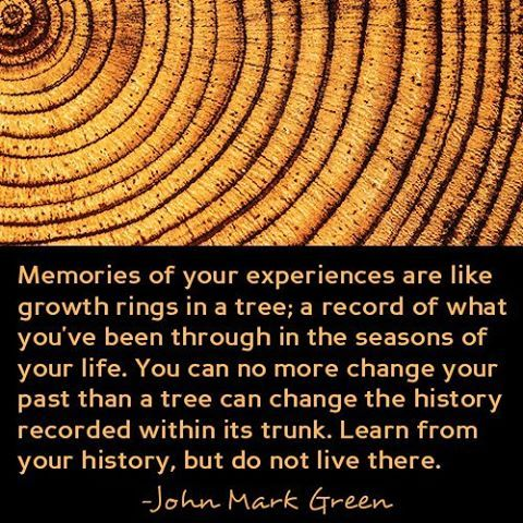 Growth Rings Quote From My Post Making Peace With Your Past At