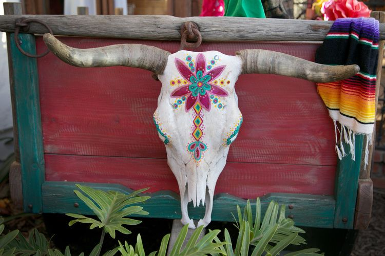 Painted cow skull [For the Love of Wonder]