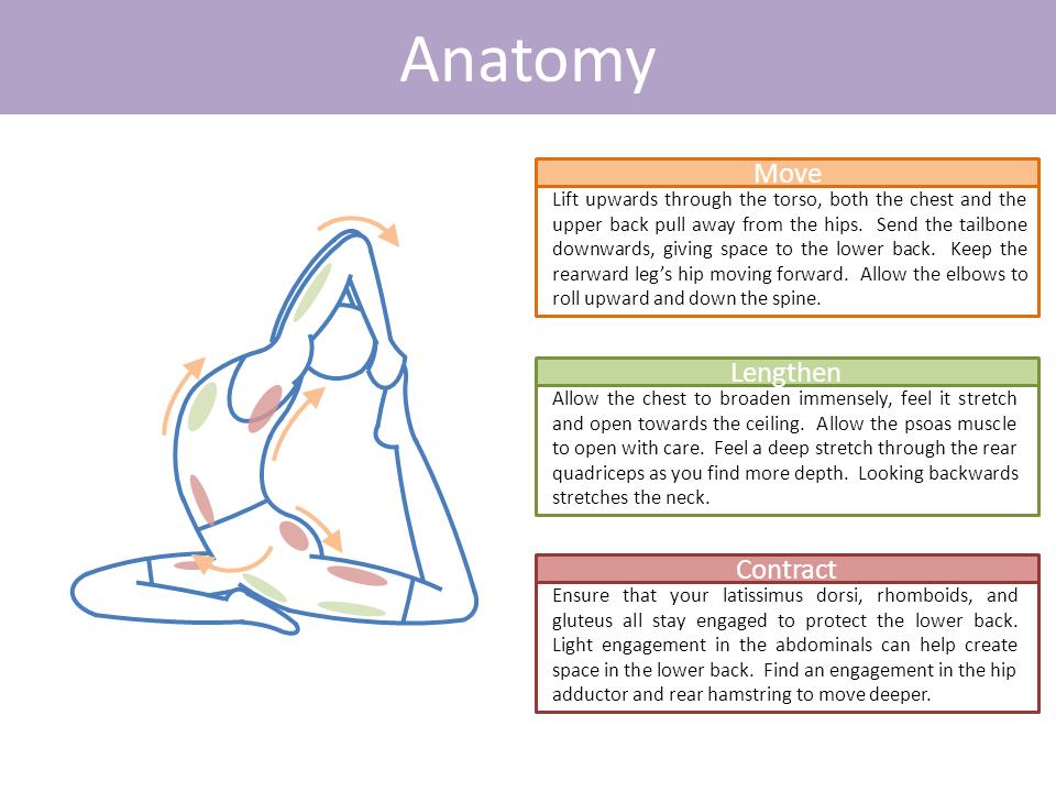 One Legged King Pigeon Eka Pada Rajakapotasana Pigeon Pose Yoga Yoga Asanas Beginner Yoga Workout
