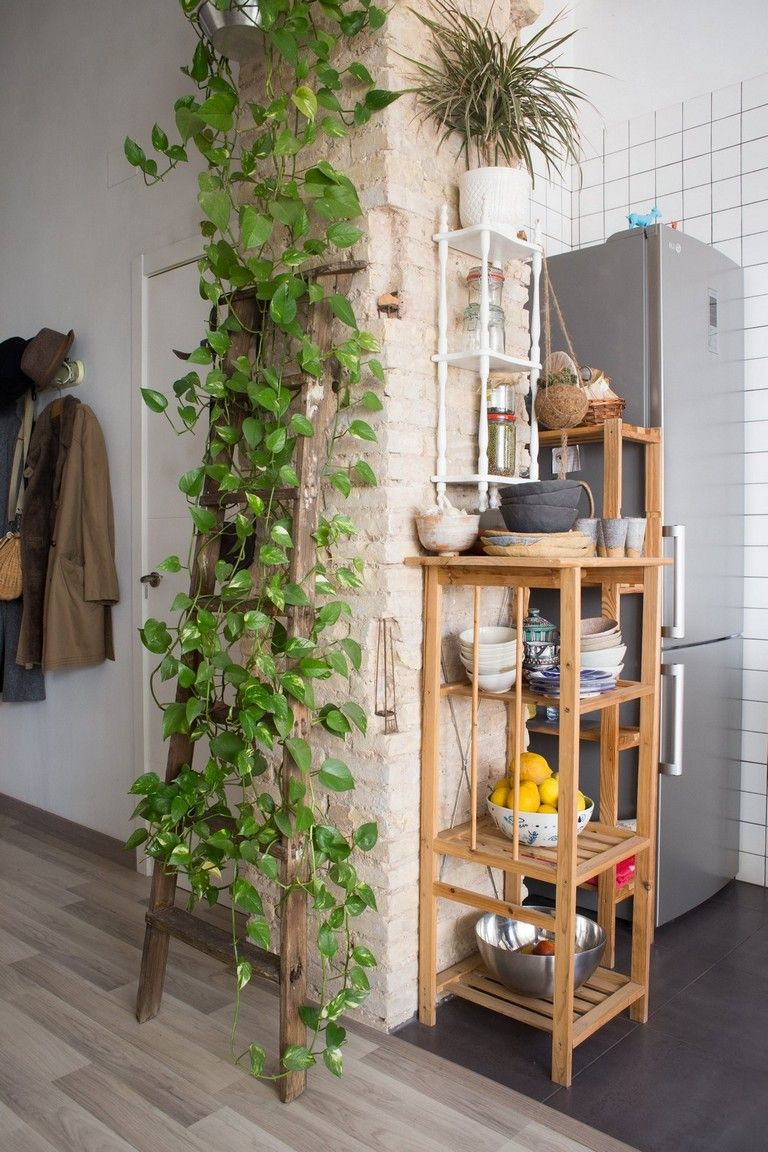 40+ FINEST TIPS TO DECORATE PLANTS HANGING ON YOUR WALL -   15 boho decor kitchen ideas
