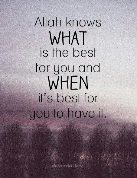 Allah Quotes Allah Knows Best .life Of Blessing  Pinterest  Allah Islam .