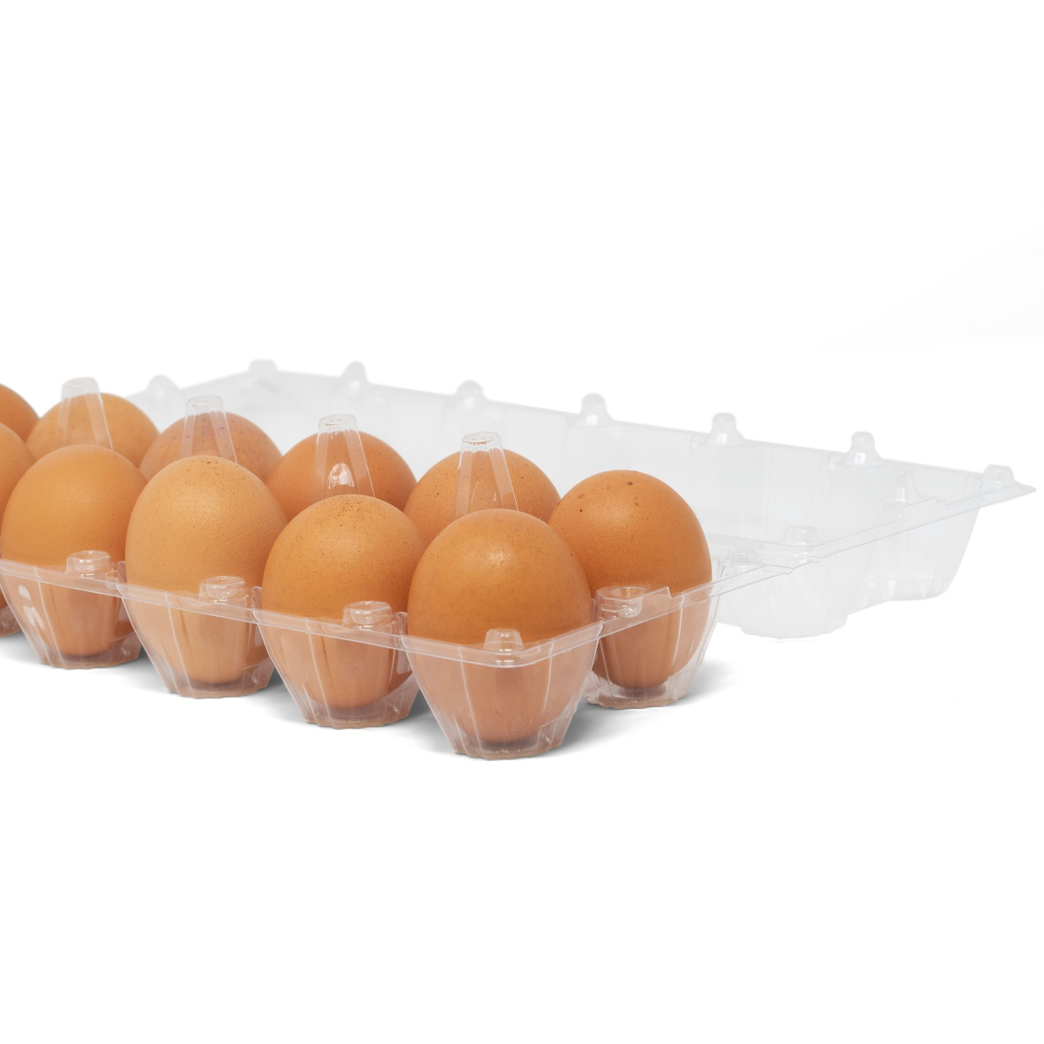 50 Pack Of Egg Cartons Bulk Clear Plastic Egg Cartons 50 Pack Wholesale Chicken Egg Cartons For Farmers Agricultural Industries And More In 2020 Egg Carton Chicken Eggs Plastic Eggs