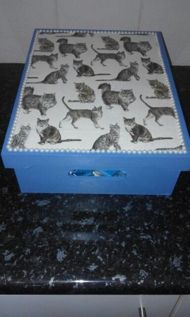 CAT box for all my cat goodies