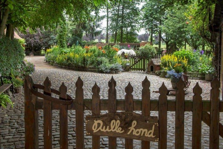Vind de ideale tuinaannemer die over de kwaliteiten en de tools beschikt om jouw tuinplannen en dromen te realiseren.
